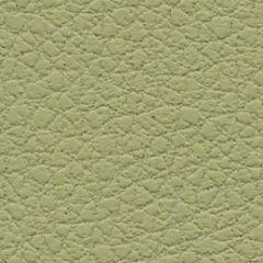 Ultrafabrics Brisa 303-4510 Celery Upholstery Fabric