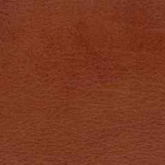 Allegro 7065 Old Whiskey Marine Upholstery Fabric