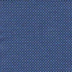 Tempotest Michelangelo 50964-20 Indoor/Outdoor Upholstery Fabric