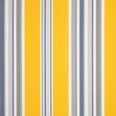 Dickson Orchestra Stripes Windsor 6292 Awning Fabric