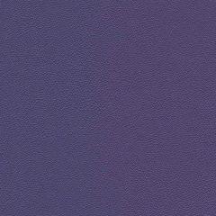 Allsport 3009 Bright Violet Indoor Upholstery Fabric