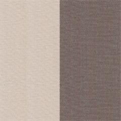 Tempotest Stripe Pearl Grey 969 Awning Fabric