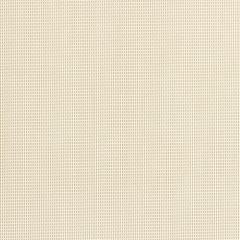Phifertex Almond 186 54 inch Sling / Mesh Upholstery Fabric