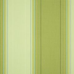 Dickson Orchestra Stripes Boston Lime 8630 Awning Fabric