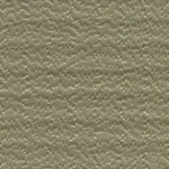 Weblon Coastline Plus Beige CP-2792 Awning Fabric