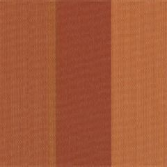 Tempotest Stripe Roasted Peppers 966/426 Awning Fabric