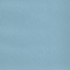 Olympus Boltasport Ice Blue OLY295 Multipurpose Upholstery Fabric