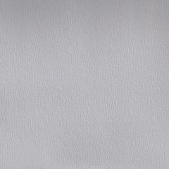 Olympus Boltasport Lt Gray OLY165 Multipurpose Upholstery Fabric