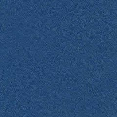 Allsport 3006 Royal Blue Indoor Upholstery Fabric