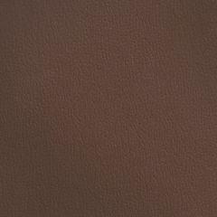 Olympus Boltasport Earth OLY255 Multipurpose Upholstery Fabric
