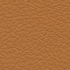 Ultrafabrics Brisa 393-3823 Aztec Upholstery Fabric