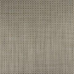 Phifertex Cane Wicker Balsa CX3 Wicker Weave 54 inch Sling / Mesh Upholstery Fabric