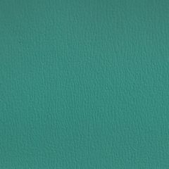 Olympus Boltasport Turquoise OLY135 Multipurpose Upholstery Fabric