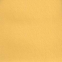 Olympus Boltasport Cornsilk OLY345 Multipurpose Upholstery Fabric