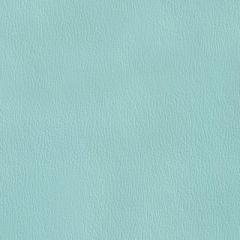 Olympus Boltasport Tahiti OLY300 Multipurpose Upholstery Fabric
