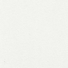 Top Gun 468 Arctic White 62 Inch Awning / Marine Shade Fabric