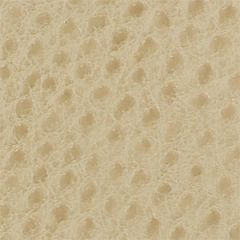Skin Tex Ostrich SO-312 Buff Outdoor Upholstery Fabric