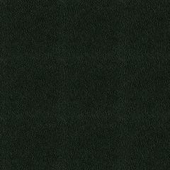 By the Roll - Stamoid 4128-00002 Black 59 inch Marine Topping and Enclosure Fabric