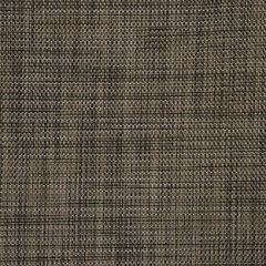 Phifertex Plus Copperlite NAK 54-inch Sling Upholstery Fabric