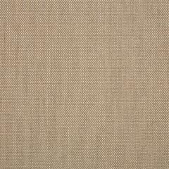 Sunbrella Augustine Ashe 5928-0054 Sling Upholstery Fabric