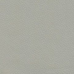 Ultrafabrics Brisa 5820 Quick Silver Upholstery Fabric