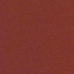 Allsport 1006 Aztec Red Indoor Upholstery Fabric