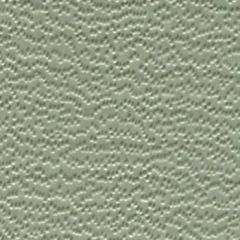 Weblon Coastline Plus Gull Grey CP-2717 Awning Fabric
