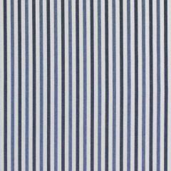 Ralph Lauren Shorebirds ticking Nautical Blue LCF67392F Amagansett Awnings Outdoor Collection Upholstery Fabric
