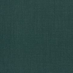 Phifertex Plus Holly Green CL1 54 inch Sling / Mesh Upholstery Fabric