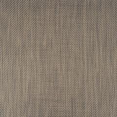 Phifertex Sisal Tungsten AKO Wicker Weave 54 inch Sling / Mesh Upholstery Fabric