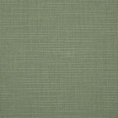 Sunbrella Silica Sage 4896-0000 46-Inch Awning / Marine Fabric