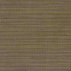 Sunbrella Destiny Walnut 50078-0003 Sling Upholstery Fabric