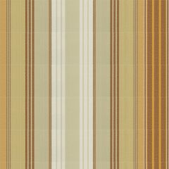 Tempotest Stripe Natural/Gold 5011/54 Awning Fabric