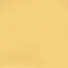 Olympus Boltasport Sundance OLY315 Multipurpose Upholstery Fabric