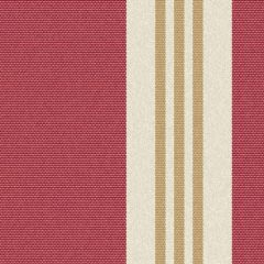 Outdura Tory Radiant 8031 The Ovation II Collection - Reversible Upholstery Fabric
