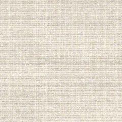Sunbrella by CF Stinson Contract Catalina Quartz 63500 Upholstery Fabric