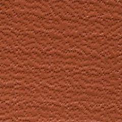 Weblon Coastline Plus Rust CP-2709 Awning Fabric