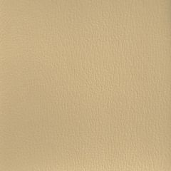 Olympus Boltasport Sand OLY180 Multipurpose Upholstery Fabric