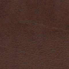 Allegro 7066 Briarwood Marine Upholstery Fabric