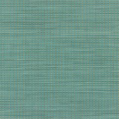 Phifertex Plus Straw Mat Blue LBY 54 inch Sling / Mesh Upholstery Fabric