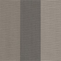 Tempotest Stripe Greco Grey 967/926 Awning Fabric