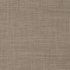 Phifertex Crystal Linen Ash NC4 PVC/Olefin Blend 54 inch Sling / Mesh Upholstery Fabric