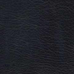 Allegro 7060 Coal Marine Upholstery Fabric