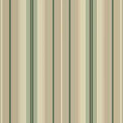 Outdura Fancy Stripes 364-203 Awning Fabric