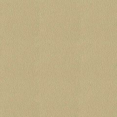 By the Roll - Stamoid 4128-01897 Sand 59 inch Marine Topping and Enclosure Fabric