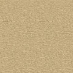 Ultraleather Buff 3609 Upholstery Fabric