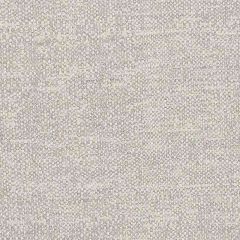 Sunbrella Chartres Silver CHA J194 140 European Collection Upholstery Fabric