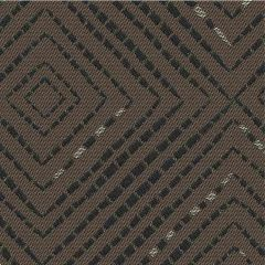 Outdura Domino Coco 3119 The Ovation 3 Collection - Earthy Balance Upholstery Fabric