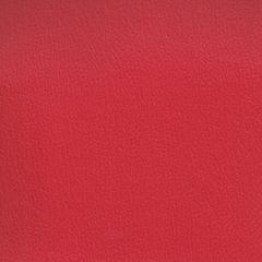 Olympus Boltasport American Beauty OLY130 Multipurpose Upholstery Fabric