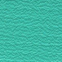 Weblon Coastline Plus Aquamarine CP-2744 Awning Fabric